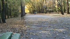 An avenue is in a park Stock Footage