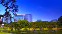 Japanese Garden ARTCOLORED 10 - stock footage