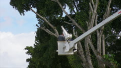 HD Men Cutting Old Tree in Boom Canister Truck  1 Stock Footage