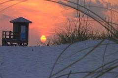 Sunset grass beach1 Stock Footage