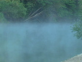 Wood stream Stock Footage
