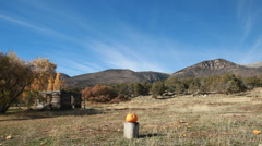 Pumpkin exploded by mountain slow P HD 8085 Stock Footage