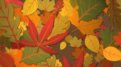 Autumn Leaves - stock footage