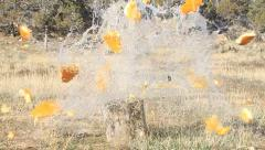 Pumpkin shoot with rifle slow P HD 8060 Stock Footage