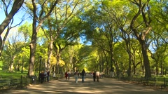 The mall, Central Park, New York City, wide shot Stock Footage