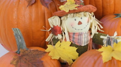 Scarecrow Doll And Fresh Pumpkins For Thanksgiving Stock Footage
