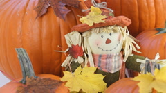 Thanksgiving Scarecrow Doll With Pumpkins Stock Footage