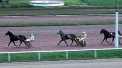 Horserace (4) Stock Footage