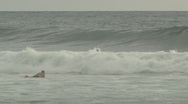 Stock Video Footage of surfing in Costa Rica