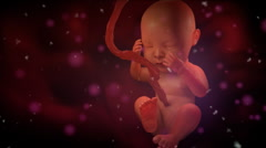 Inside the womb - stock footage