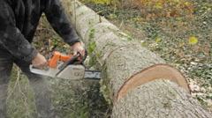 Logging slices 1 Stock Footage