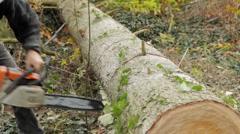 Logging slices 2 Stock Footage