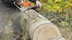 Logging slices 3 Stock Footage
