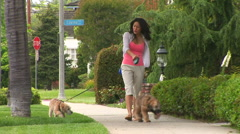 Young woman walking dogs in neighborhood - stock footage