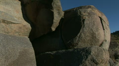 Stock Video Footage of Cactus in Joshua Tree National Park