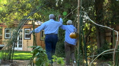 Senior couple outdoors in garden - stock footage