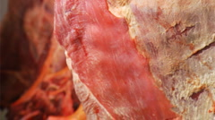 raw meat - stock footage