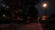 Night in a Park 01 Stock Footage