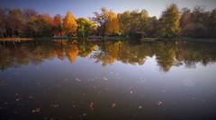 Autumn Scenery  Stock Footage
