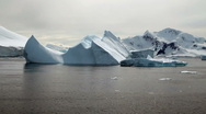 Stock Video Footage of Icebergs in Antarctica Peninsula