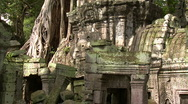 Stock Video Footage of Overgrown Ruins of Ta Phrom temple