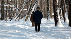 Senior couple go for a walk with a dog in winter forest Stock Footage