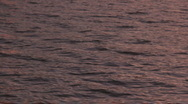 Waves on the river water on the sunset light Stock Footage