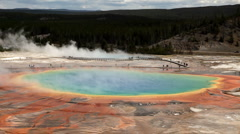 Grand Prismatic Spring in Yellowstone National Park Stock Footage