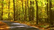 Autumn drive 0003 Stock Footage
