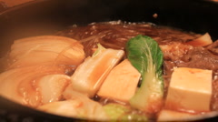 Japanese Beef Stew - stock footage