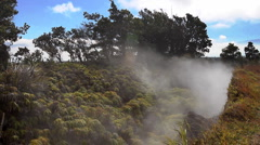 Volcanic Steam Vents Stock Footage