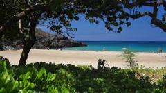 Tropical Beach Through Foliage Stock Footage