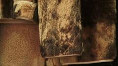 Fur jacket Stock Footage