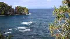 Scenic Ocean Cliffs Stock Footage