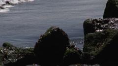 Chile Waves on Rocks Slowmo 1 Stock Footage