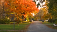 Small town Ontario, autumn colors on street Stock Footage