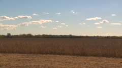 Agriculture, late harvest combine, #3 through frame, left to right Stock Footage
