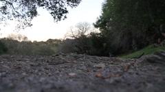 Rocky Trail Stock Footage