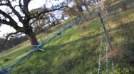 Stock Video Footage of Barbed Wire Fence