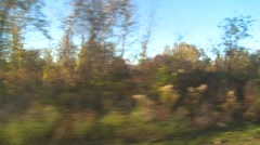 Upstate New York, passing countryside autumn colours, woods and pastrue Stock Footage
