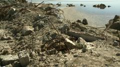 Salton Sea Shoreline - stock footage