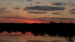 Sunrise African Savannah  Stock Footage