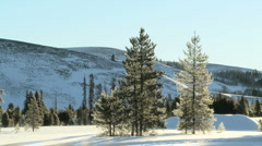 Outdoor scenic of trees and snow covered hills Stock Footage