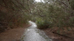 Desert stream P1 Stock Footage