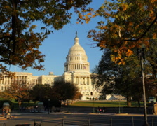 Capitol Building 01 PAL - stock footage