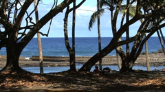 Isaac Hale Beach Park Hawaii Stock Footage