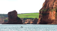 Red cliffs Stock Footage