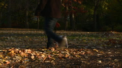 New York Central Park Dog Walking Stock Footage