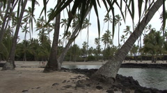Hawaii Bay at Place of Refuge Stock Footage