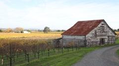Village Barn in Vineyards 0861 Stock Footage